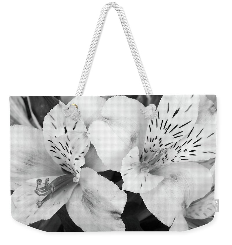 Peruvian Lilies Weekender Tote Bag featuring the photograph Peruvian Lilies Flowers Black And White Print by James BO Insogna