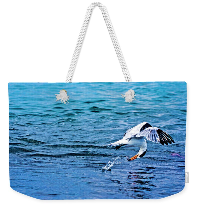 Paisaje Weekender Tote Bag featuring the photograph Pescando Vida by Jose Miguel Angeles