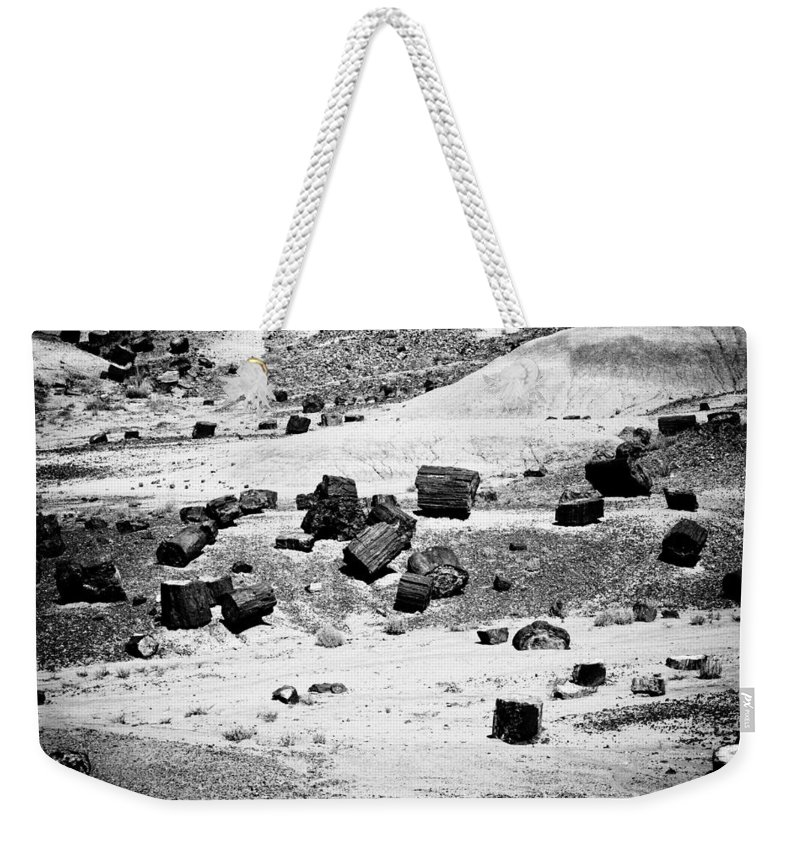 Petrified Forest Weekender Tote Bag featuring the photograph Petrified Forest National Park #3 by Robert J Caputo