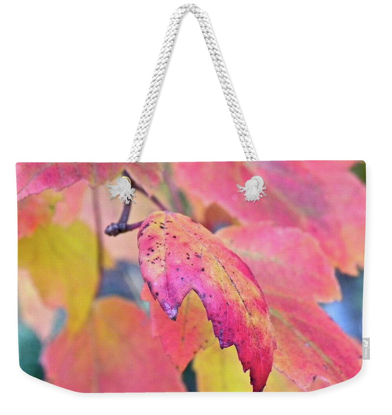 Fall Weekender Tote Bag featuring the photograph A Sign Of Fall by Shannon Turek