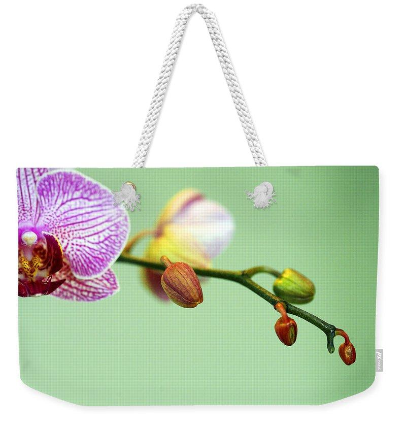 Phalaenopsis Weekender Tote Bag featuring the photograph Phalaenopsis by Marilyn Hunt