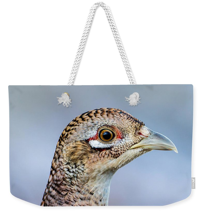 Pheasant Hen Weekender Tote Bag featuring the photograph Pheasant Hen by Torbjorn Swenelius
