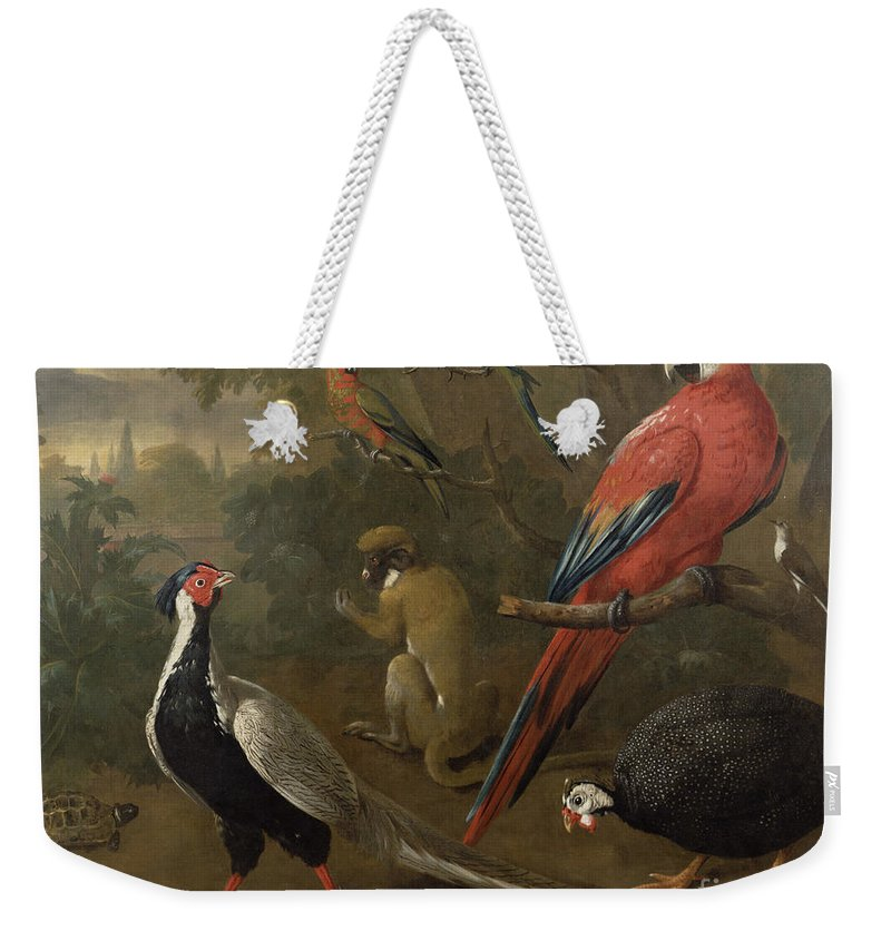 Pheasant Weekender Tote Bag featuring the painting Pheasant Macaw Monkey Parrots And Tortoise by Charles Collins