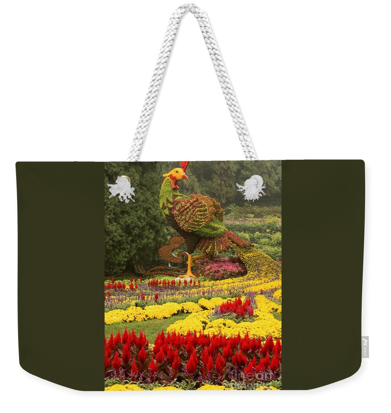 Summer Palace Weekender Tote Bag featuring the photograph Phoenix In Summer Palace by Carol Groenen
