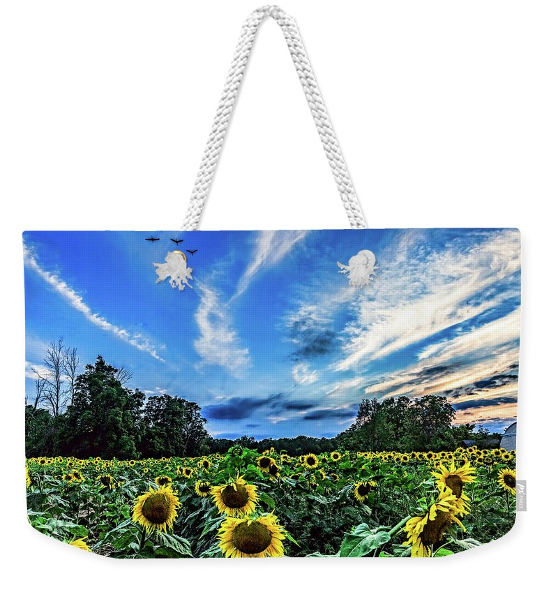 Sunflowers Weekender Tote Bag featuring the photograph Photobomb by Joe Holley