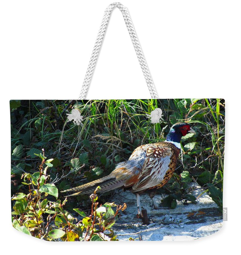 Tadoussac Weekender Tote Bag featuring the photograph Pheasant by Donica Abbinett