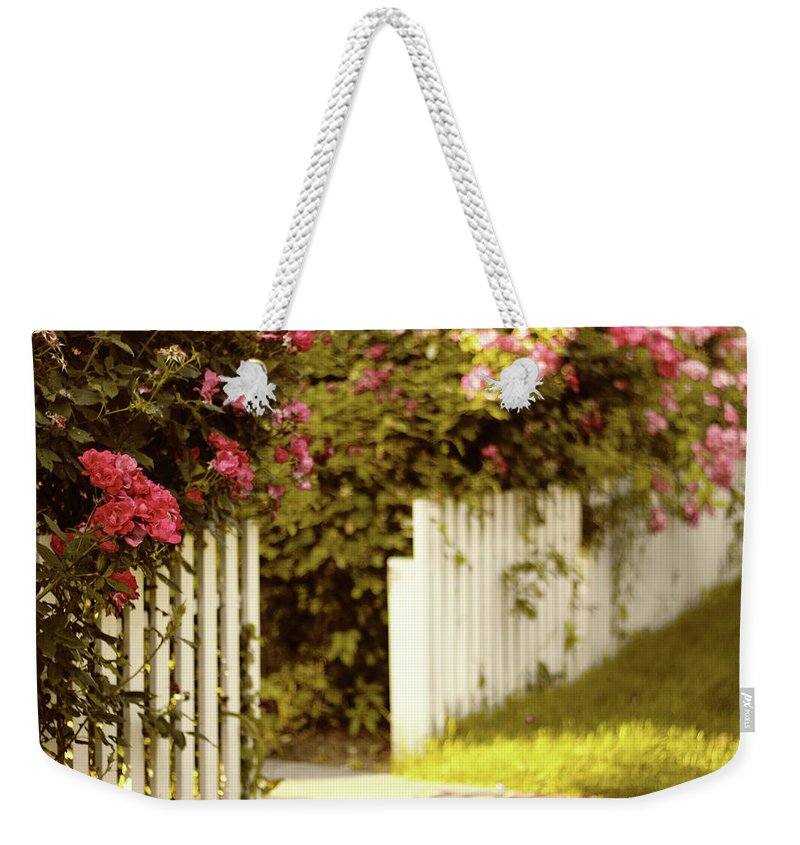 Roses Weekender Tote Bag featuring the photograph Picket Fence Roses by Jessica Jenney