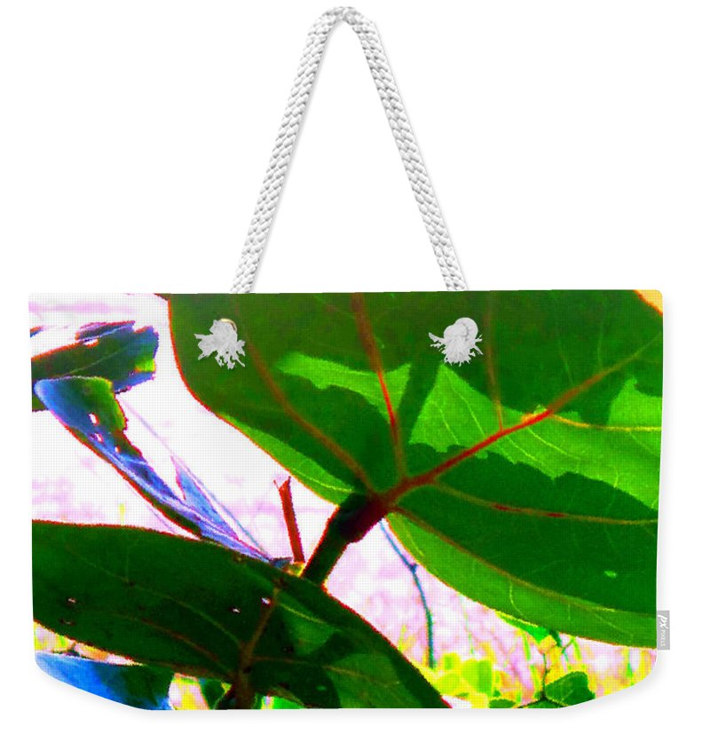 Sea Weekender Tote Bag featuring the photograph Piercing Sea Grapes by Ian MacDonald