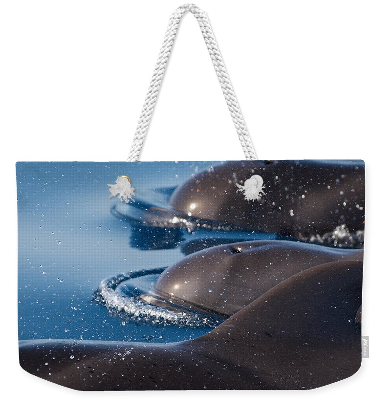 Spain Weekender Tote Bag featuring the photograph Pilot Whales 1 by Jouko Lehto