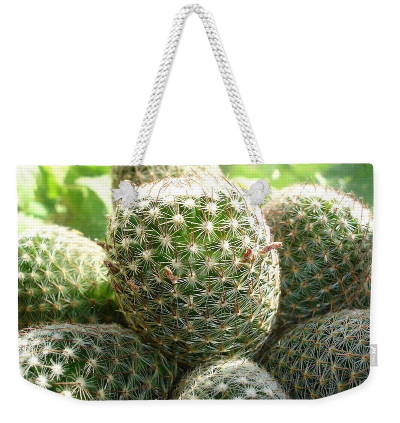 Cactus Weekender Tote Bag featuring the photograph Pincushion Cactus by Susan Baker