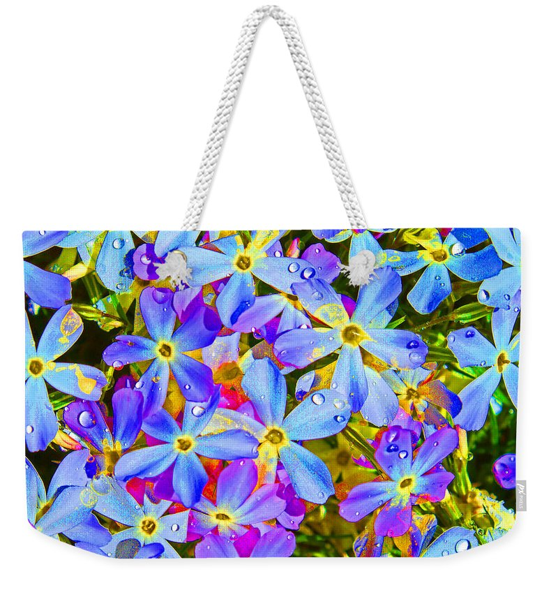 Wildflower Weekender Tote Bag featuring the photograph Pincushion Flower by Heather Coen
