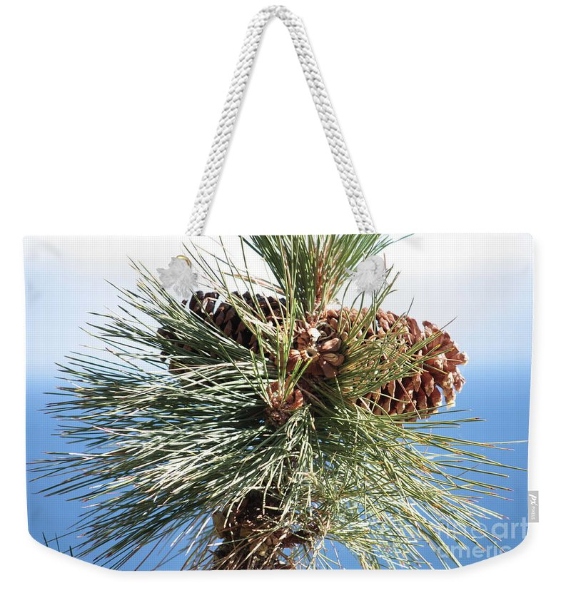 Pine Cones Weekender Tote Bag featuring the photograph Pine Cones Over Lake Tahoe by Carol Groenen