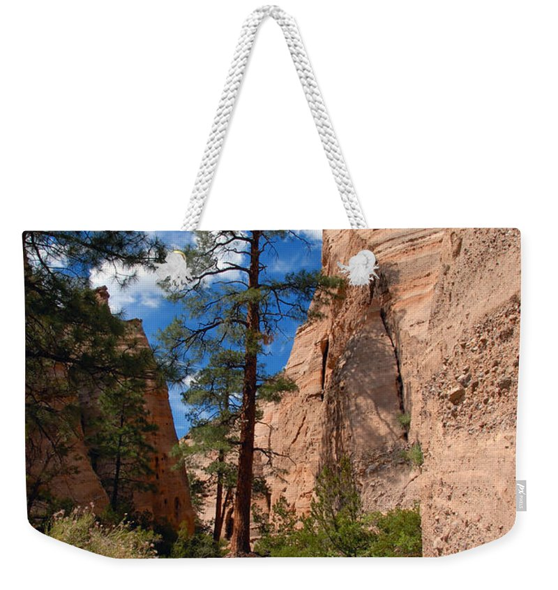 Pine Tree Weekender Tote Bag featuring the photograph Pine Tree Canyon by David Lee Thompson