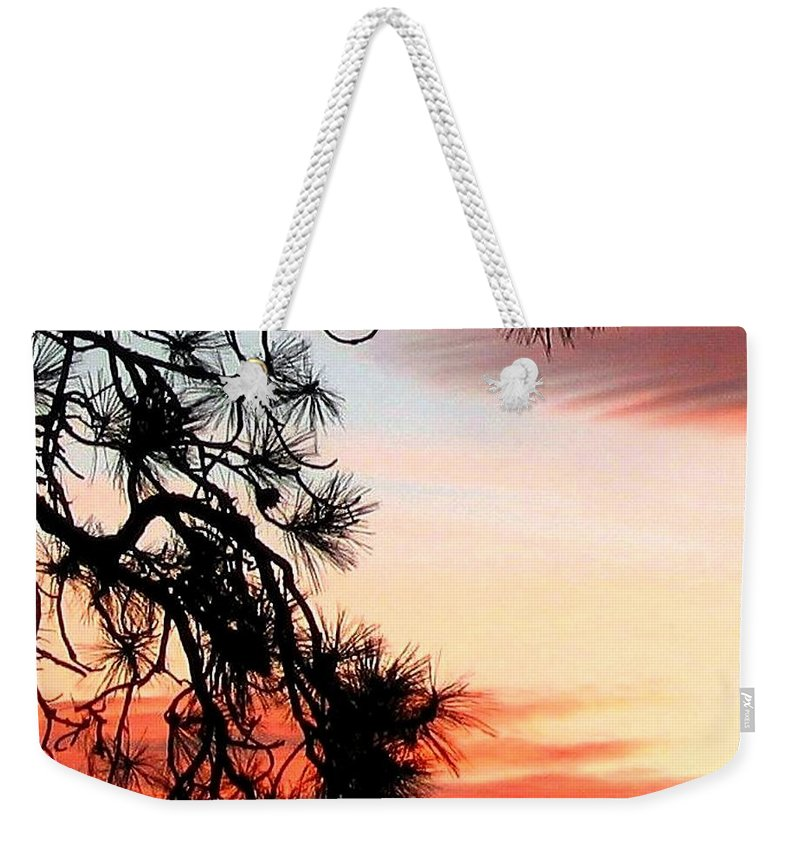 Sunset Weekender Tote Bag featuring the photograph Pine Tree Silhouette by Will Borden