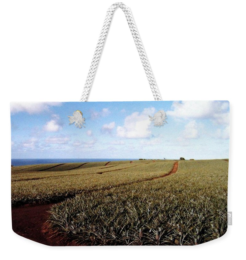 1986 Weekender Tote Bag featuring the photograph Pineapple Fields by Will Borden