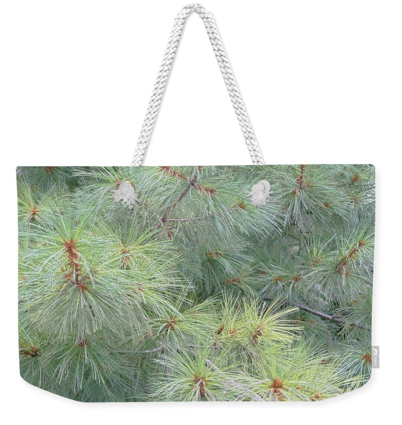 Pines Weekender Tote Bag featuring the photograph Pines by Rhonda Barrett