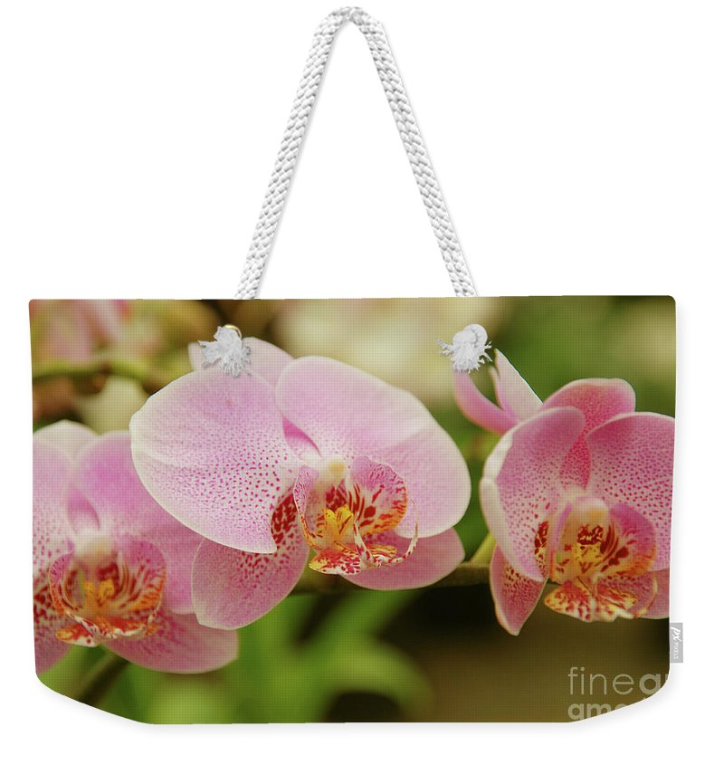 Orchids Weekender Tote Bag featuring the photograph Pink And Beautiful by Susanne Van Hulst