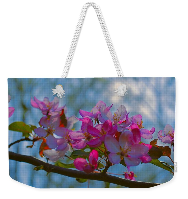Crab Weekender Tote Bag featuring the photograph Pink And Blue by Bonfire Photography