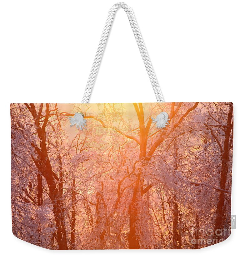 Pink Weekender Tote Bag featuring the photograph Pink and Gold by Nadine Rippelmeyer
