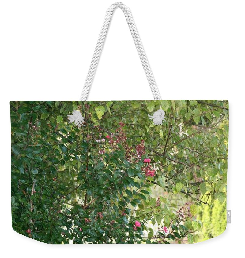 Path Weekender Tote Bag featuring the photograph Pink And Green Path by Nadine Rippelmeyer
