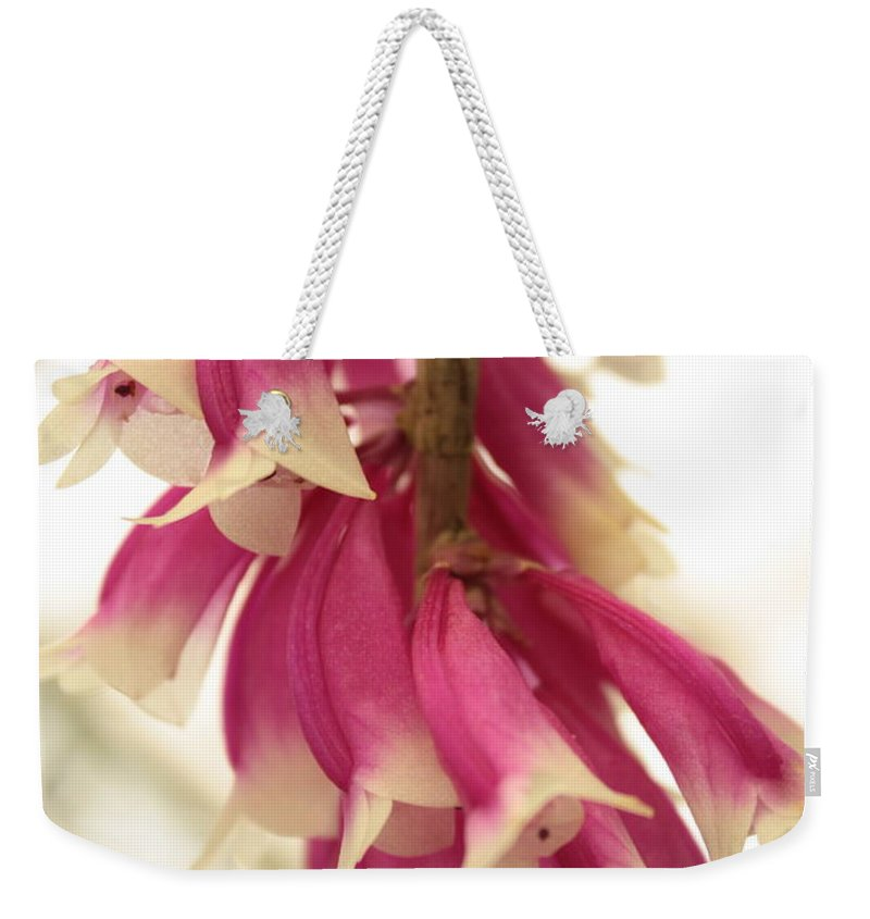 Pink And White Flowers Weekender Tote Bag featuring the photograph Pink And White Bells by Carol Groenen