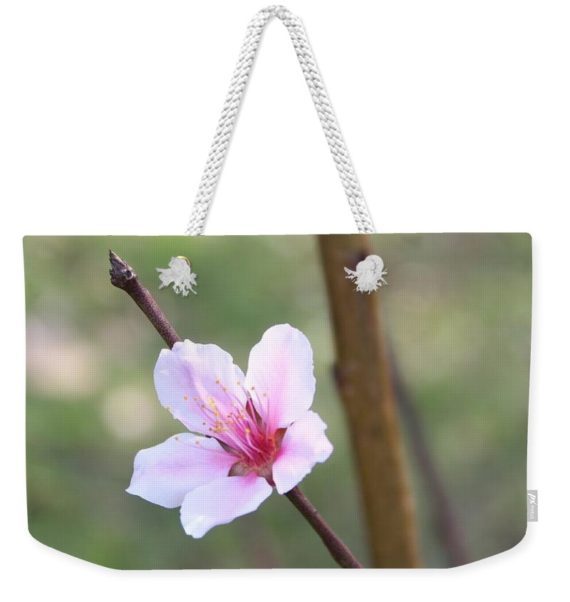 Flower Weekender Tote Bag featuring the photograph Pink And White Nectarine Blossom by Tracy