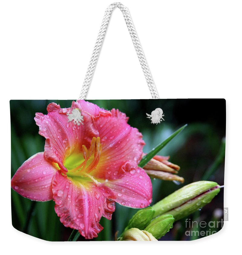 Arrangement Weekender Tote Bag featuring the photograph Pink And Yellow Lily After Rain by Alan Look