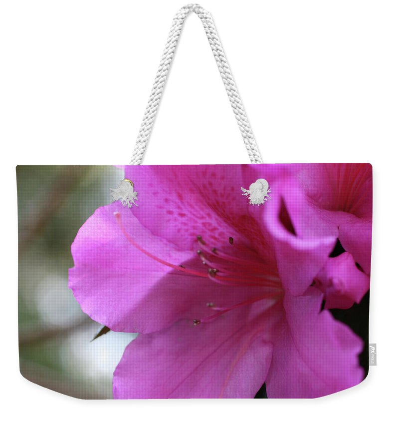 Close-up Photo Photography Flower Plant Pink Azalea Weekender Tote Bag featuring the photograph Pink Azalea by Christina Geiger
