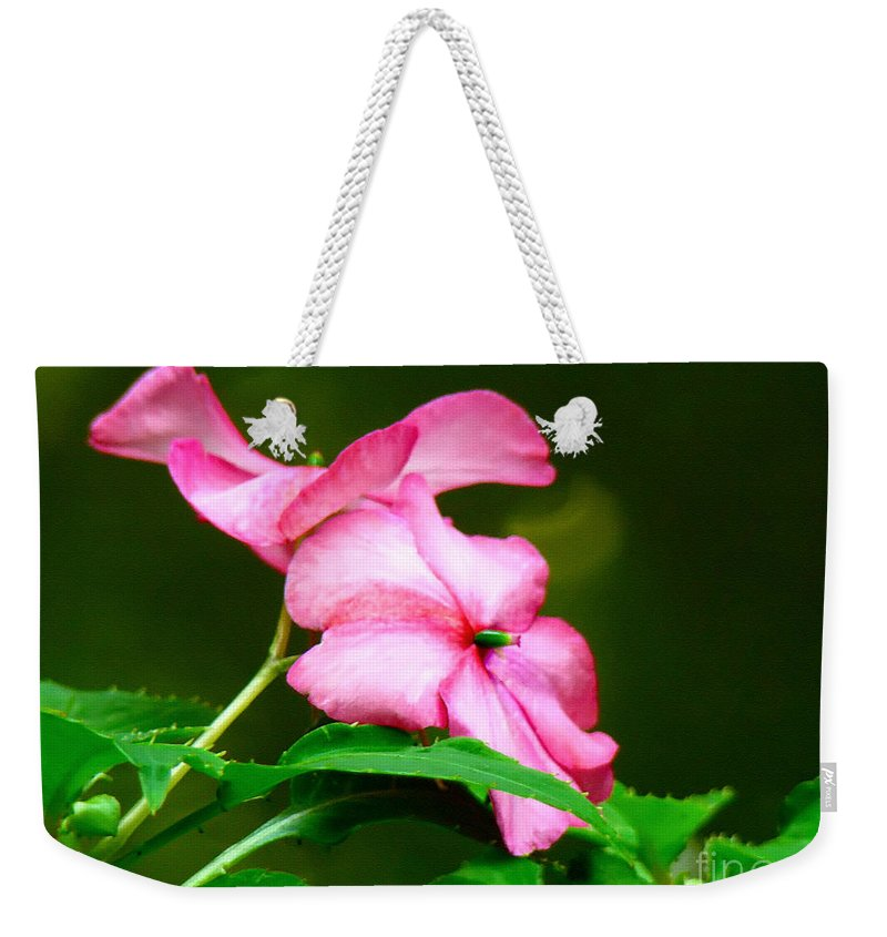 Flower Weekender Tote Bag featuring the photograph Pink Busy Lizzies by Sue Melvin