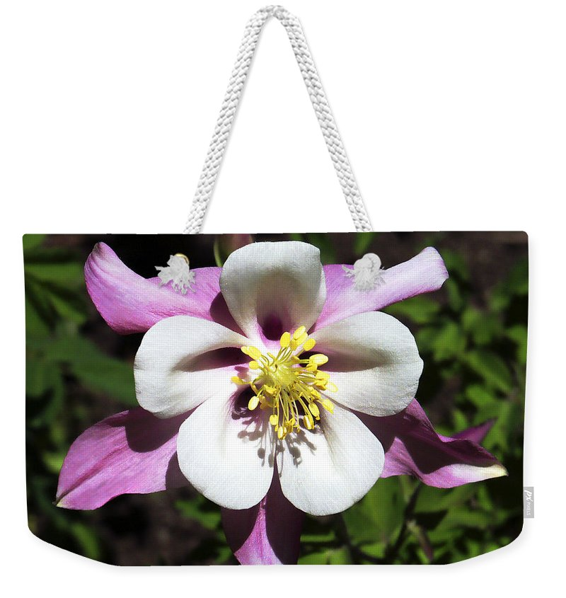 Columbine Weekender Tote Bag featuring the photograph Pink Columbine by Marilyn Hunt