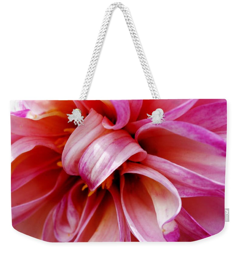 Flower Weekender Tote Bag featuring the photograph Pink Dahlia by Marilyn Hunt