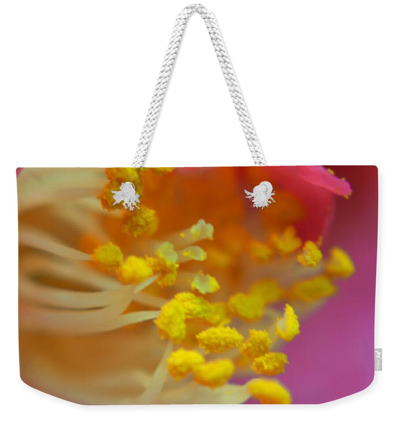 Camellia Weekender Tote Bag featuring the photograph Pink Delight by Aimee L Maher ALM GALLERY