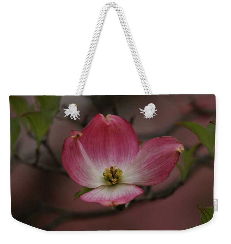 Flowers Weekender Tote Bag featuring the photograph Pink Dogwood Blossom by Sandy Keeton