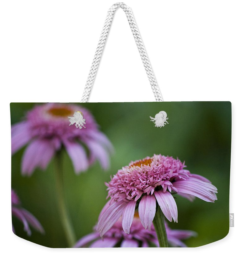 Pink Weekender Tote Bag featuring the photograph Pink Double Delight by Teresa Mucha