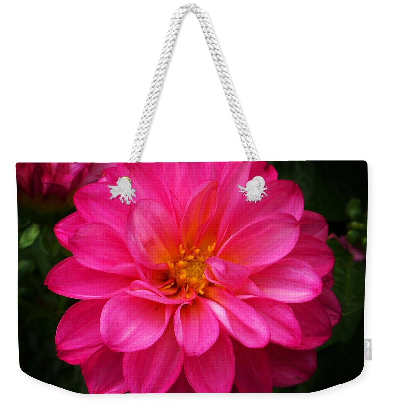 Flower Weekender Tote Bag featuring the photograph Pink Flower by Anthony Jones