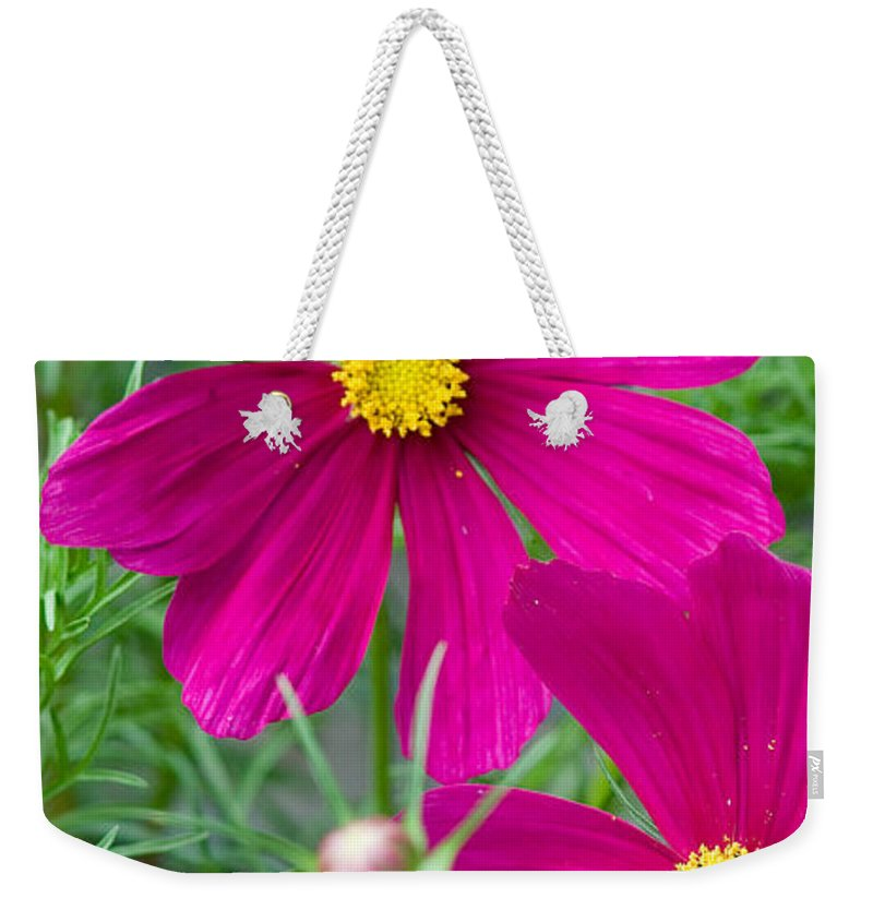 Pink Weekender Tote Bag featuring the photograph Pink Flower by Michael Bessler