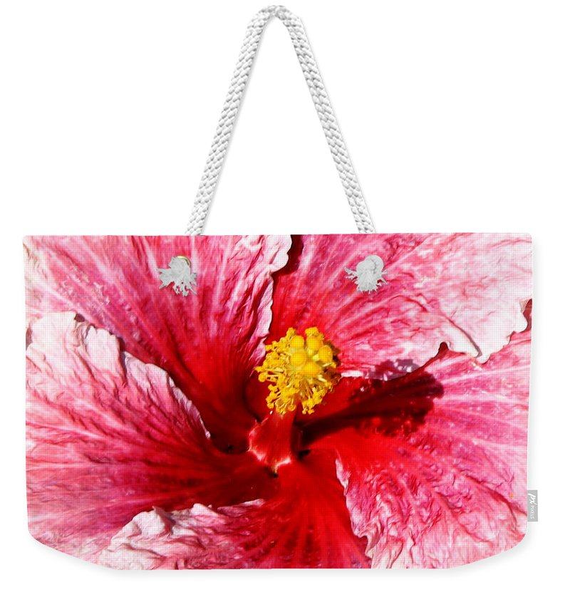 Flower Weekender Tote Bag featuring the photograph Pink Hibiscus Inspired By Georgia O'keefe by Anthony Jones