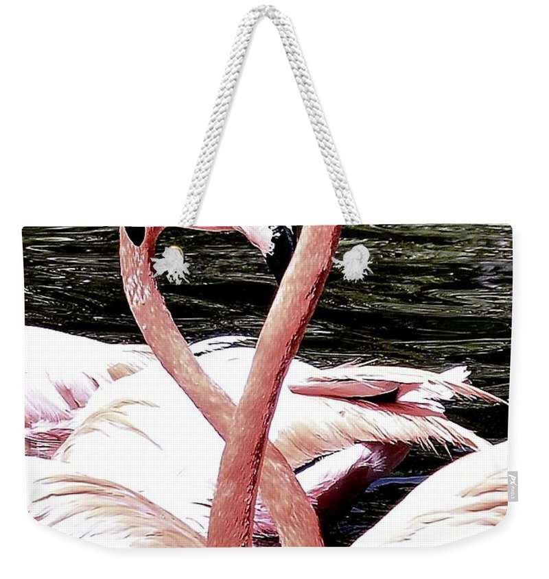 Pink Infinity Weekender Tote Bag featuring the photograph Pink Infinity by Lisa Renee Ludlum