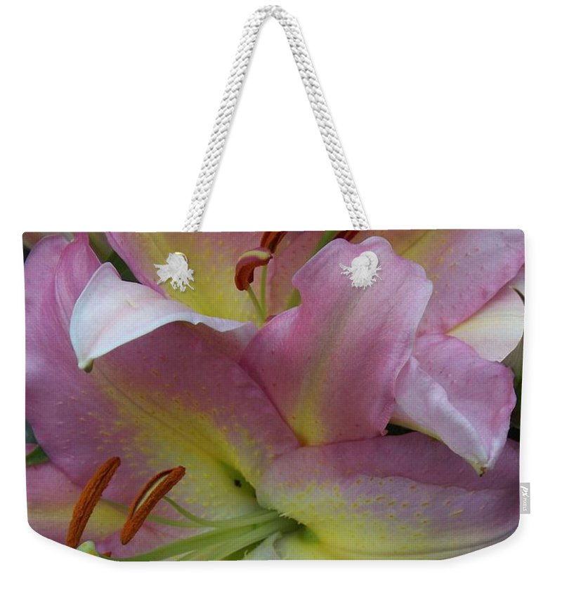 Flowers Weekender Tote Bag featuring the photograph Pink Lillies by Anita Burgermeister