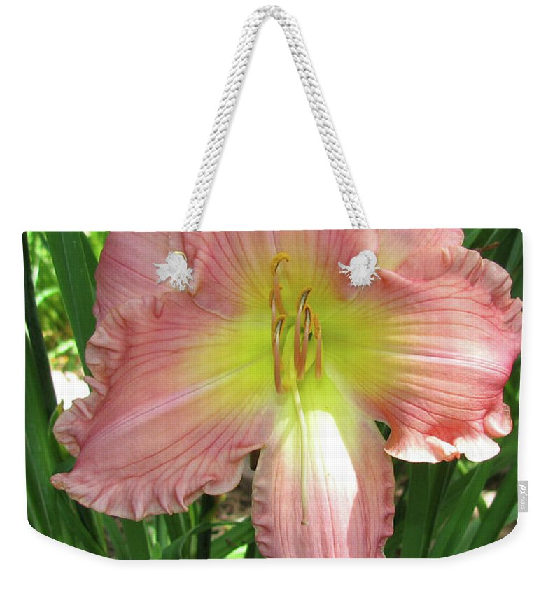 Arrangement Weekender Tote Bag featuring the photograph Pink Lily by Alan Look