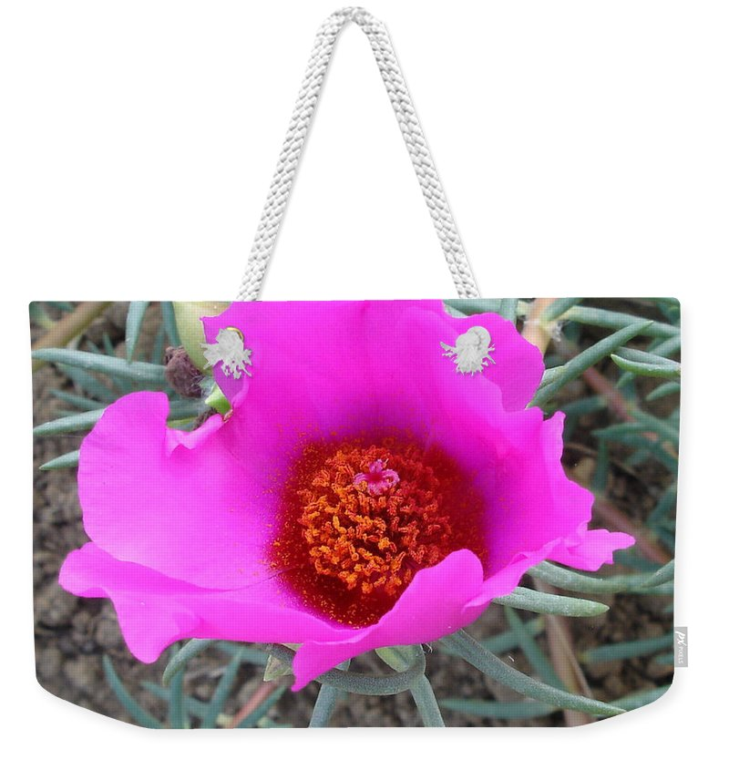 Flower Weekender Tote Bag featuring the photograph Pink Or Wot by Susan Baker