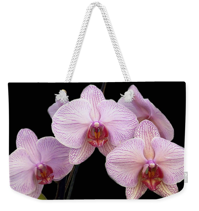 Flowers Weekender Tote Bag featuring the photograph Pink Orchids by Kurt Van Wagner