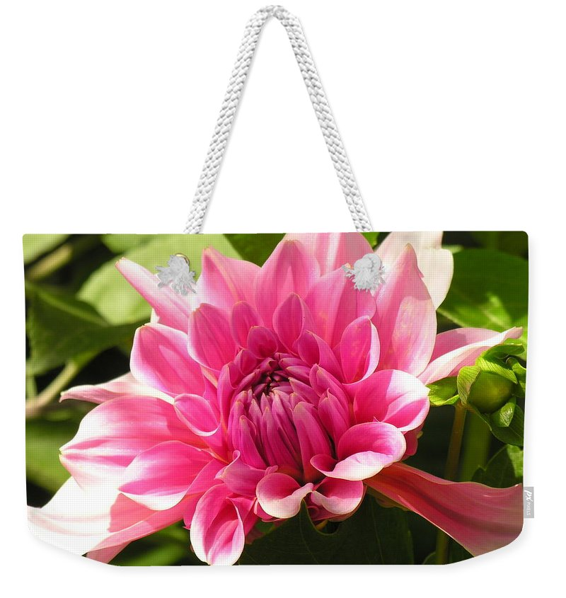 Pink Weekender Tote Bag featuring the photograph Pink Pedals by Diane Greco-Lesser