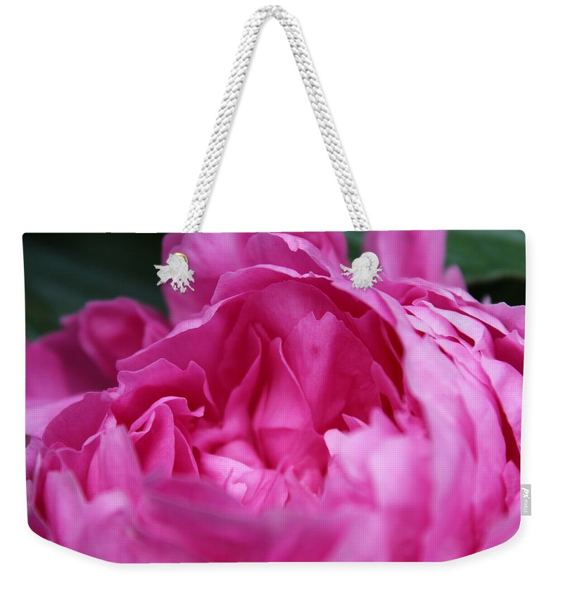 Flower Weekender Tote Bag featuring the photograph Pink Peony by Alexis Ketner