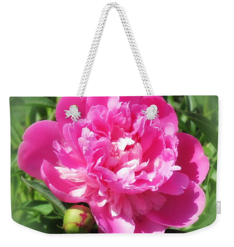 Peony Weekender Tote Bag featuring the photograph Pink Peony On Green by MTBobbins Photography