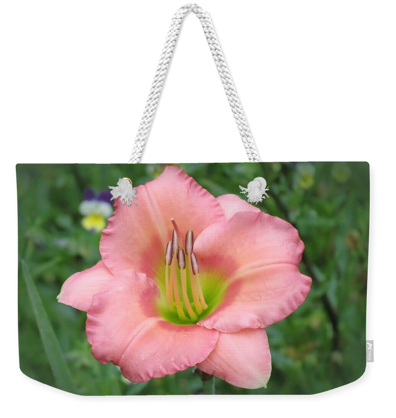 Chorus Line Daylily Weekender Tote Bag featuring the photograph Pink Petals - Chorus Line Daylily by MTBobbins Photography
