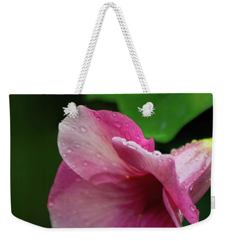 Tropical Weekender Tote Bag featuring the photograph Pink Petals In The Rain by Teresa Wilson