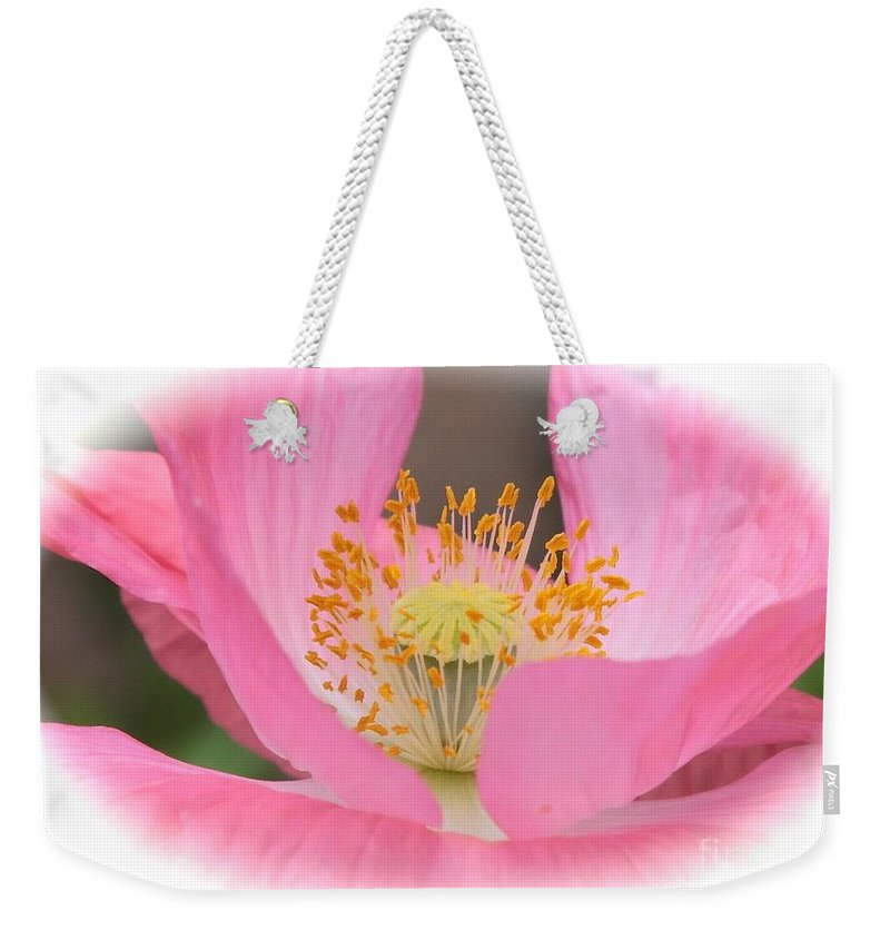 Pink Poppy Weekender Tote Bag featuring the photograph Pink Poppy Serenity by Carol Groenen