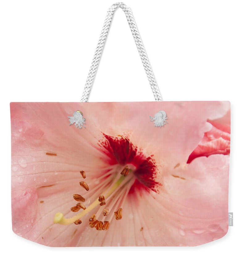 Pink Weekender Tote Bag featuring the photograph Pink Rhododendron by Steven Natanson