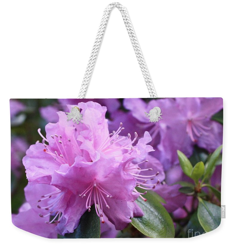 Flower Weekender Tote Bag featuring the photograph Light Purple Rhododendron With Leaves by Carol Groenen
